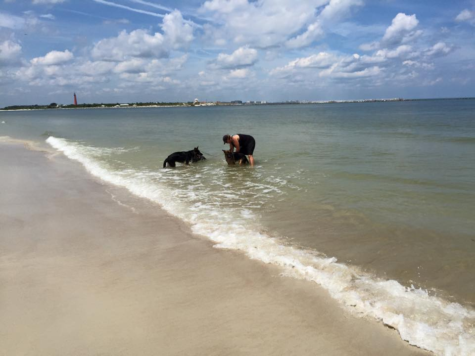 Two dogs doing leash training with professional dog trainer, Sharon Burch, at the beach.