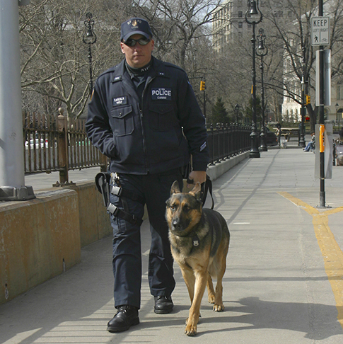 NYPD officer with and police dog patrol the Brooklyn Bridge, New York.
